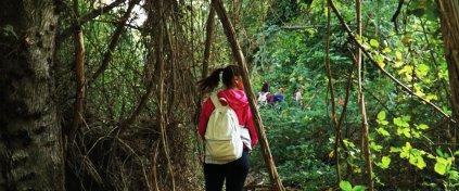 İğneada Longoz Ormanları Trekking Turu