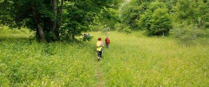 Eco Trails Köyceğiz Dalyan Trekking Turu